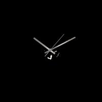NewYork_44cm